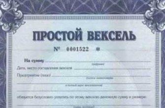 Подтверждаются права, которые передаются только вместе с документом