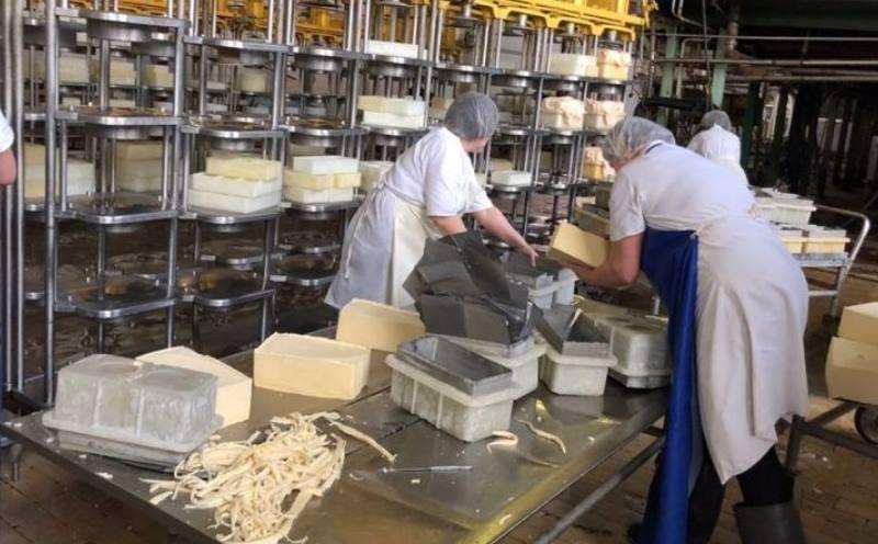Ёмкость для сыра делания